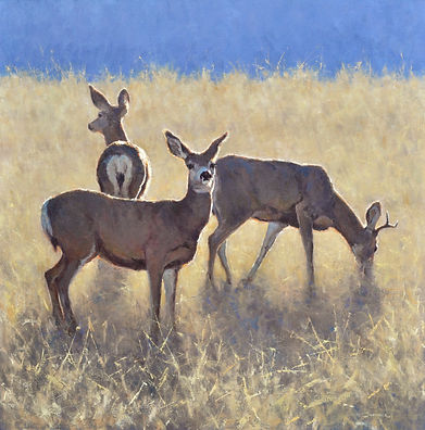 Muley Trio 36-36 (1).jpg