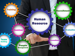 The Importance of Hiring a Human Resource Consultant for a Business