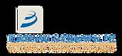 Burzenski and Company Logo_edited.png