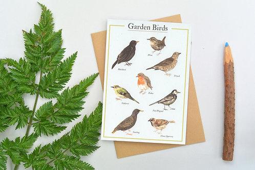 A6 Garden Birds Card