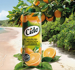 Cido.png