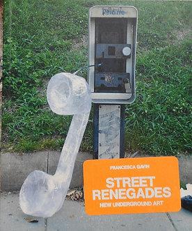 "francesca Gavin""street Renegades"""