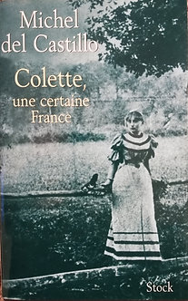 "Michel del castillo ""Colette, une certaine France"""