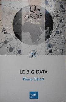 """Pierre Delort """"Le big data"""""""
