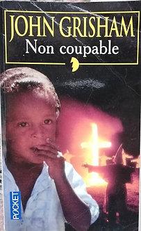 """John Grisham """"Non coupable"""""""