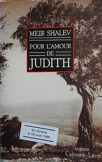 """Meir Shavel """"Pour l'amour de Judith"""""""