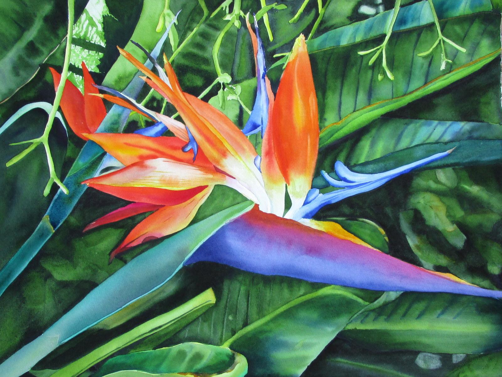 Mauna Lani Bird of Paradise