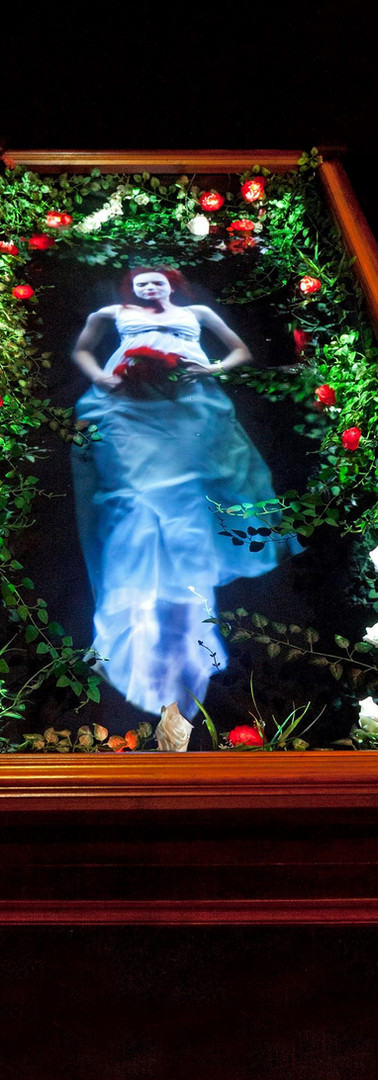 OPHELIA'S GHOST - Holographic Public Installation