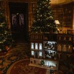 Harewood Christmas 2019-01678.jpg
