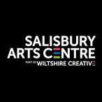 SALISBURY ARTS CENTRE.jpeg