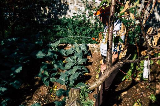 London_food_travel_photographer_watering_the_garden