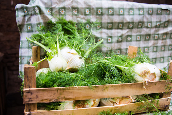 London_food_travel_photographer_italian_fennel_