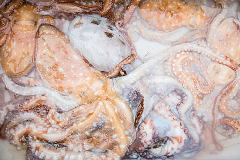 London_food_travel_photographer_octopus