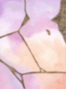 Cicatriz rosa WEB.jpg