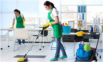 Professional-Cleaning-Company.png