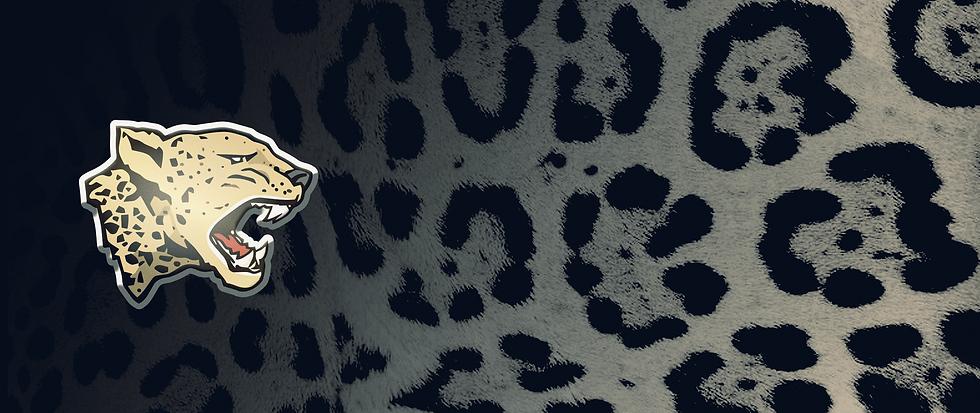 banner-logo-giaguari.png