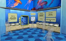 Ocean exhibit concept