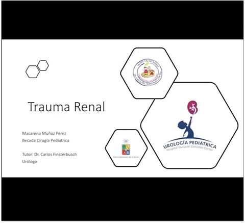 Trauma renal.jpg