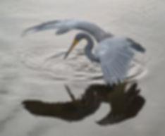 220px-Heron_tricol_01.jpg