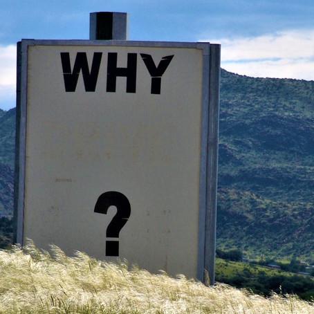 Les 5 « pourquoi » ?