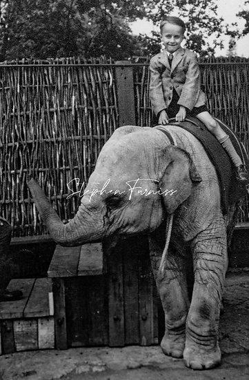 Boy on a Elephant! 1951