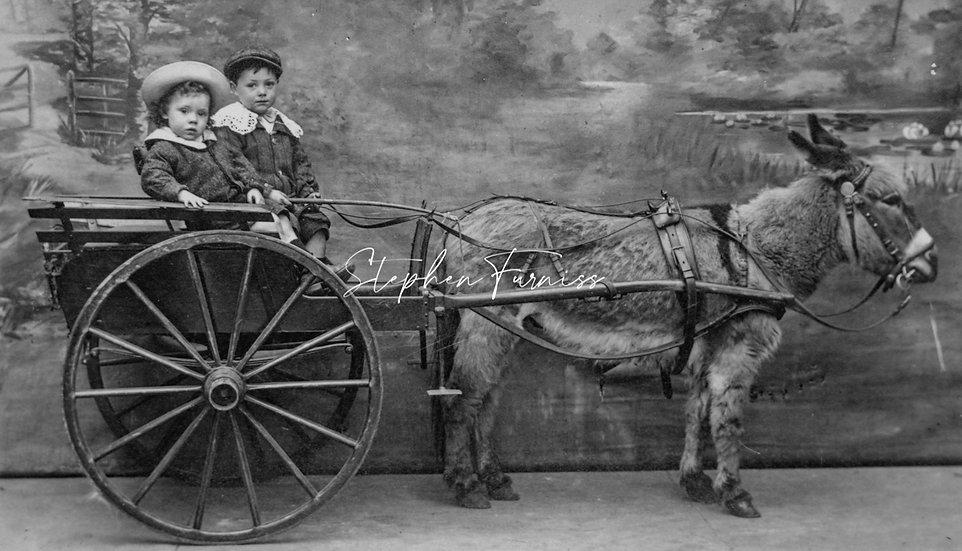 Child on donkey cart 1910