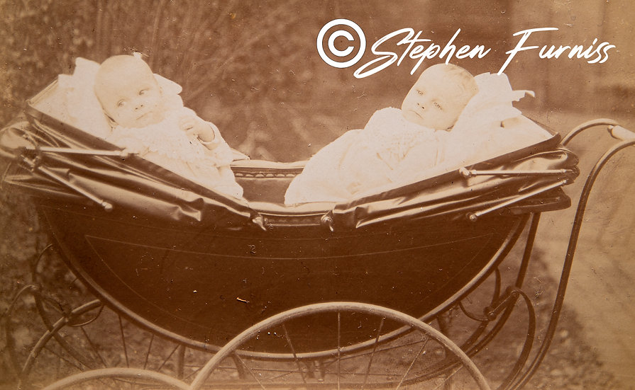 Tom & Jack 6 Months Old 1905