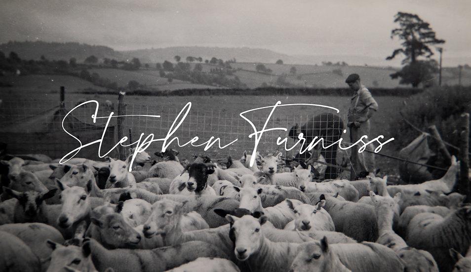 Sheep Fold 1950's