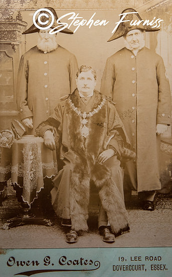 His Worship the Mayor 1895
