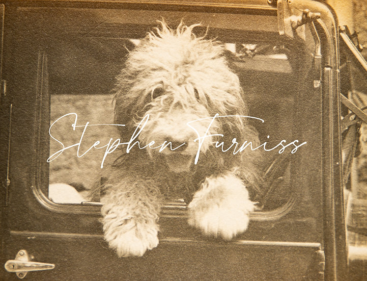 Dog in the Driving Seat! 1930's