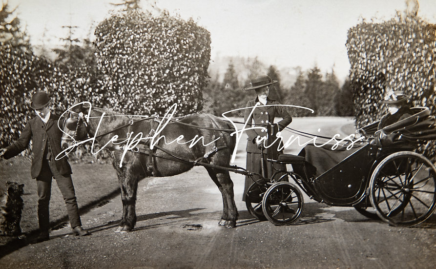 The Pony Carriage 1905