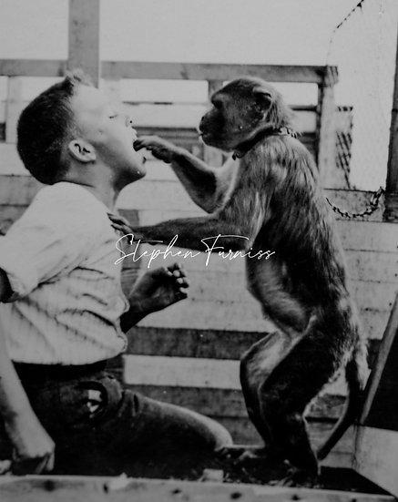 Monkey checking boys teeth! 1930's