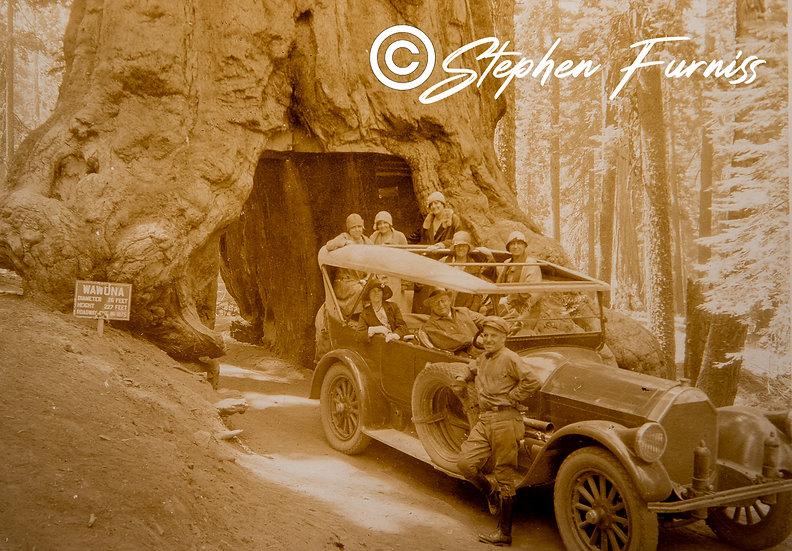 Yosemite Park California August 1928