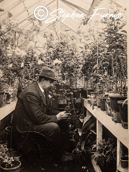 In his Greenhouse c.1920