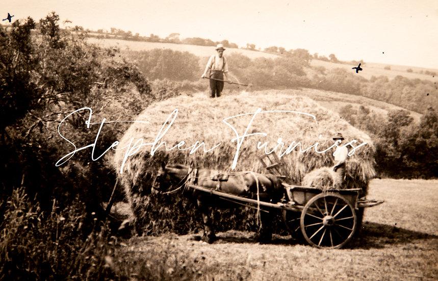 The Haystack 1930's