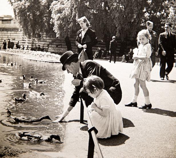 Feeding the Ducks 1950's