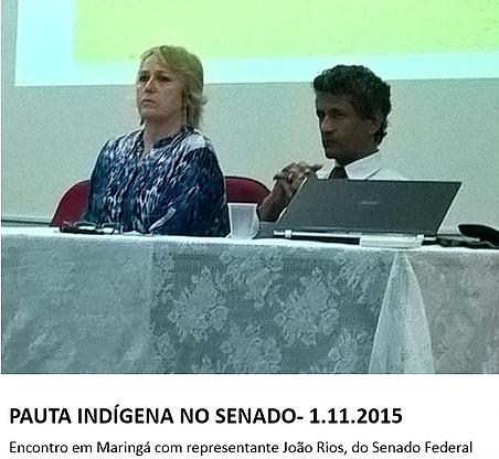 Pauta_Indígena_no_Senado_-_novembro_de_2015