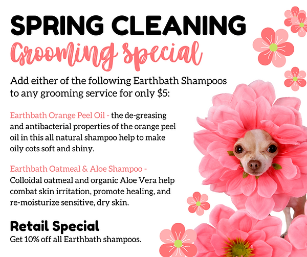 SPRING CLEANING - Grooming Special - for