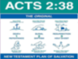 biblical plan of salvation.PNG