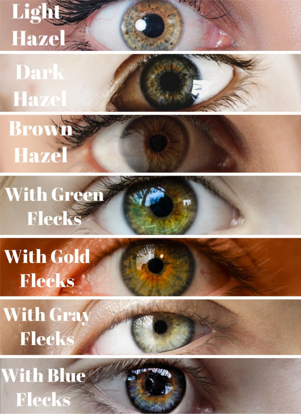 Hazel eyes, different shades of hazel eyes.
