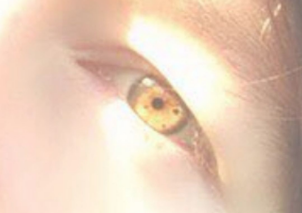 amber eyes, amber eye color, amber brown eyes, dark amber eyes, amber eyes rare, amber green eyes, natural amber eyes, light amber eyes, golden amber eyes, amber eyes human, amber yellow eyes, real amber eyes, yellow amber eyes, true amber eyes, bright amber eyes, eyes amber, blue amber eyes, ttdeye amber brown, beautiful amber eyes, amber eyes real, gold amber eyes, amber brown eye color, amber colored eyes in humans, honey amber eyes, amber eyes in sunlight, ttdeye amber grey, pale amber eyes, green eyes with amber ring, light brown amber eyes, amber brown ttdeye, i have amber eyes, golden brown amber eyes, shades of amber eyes, copper amber eyes, natural amber eye color, dark skin amber eyes, amber green eyes color, amber eyes with blue ring, blue green amber eyes, amber eyes dark skin, eye amber color, amber eyes with green ringSonya Marlene, Sonya Marlene Snedden, Traditional Women, Traditional Values, Pentecostal Hairstyles, Hooded Eyes, White European Culture, Western Culture, White people, Its ok to be traditional, its ok to have dark hair, its ok to be white, brunette beauty, brown hair shades, brunettes, beautiful brunettes, white brunette women, white brunette girls,