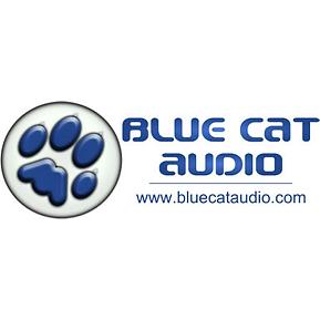 Blue-Cat-Logo_7422a71e-e3eb-4791-90fc-21