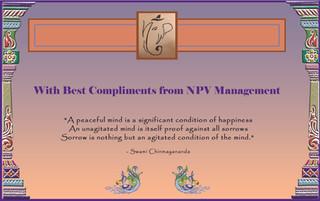 NPV management_2016.jpg