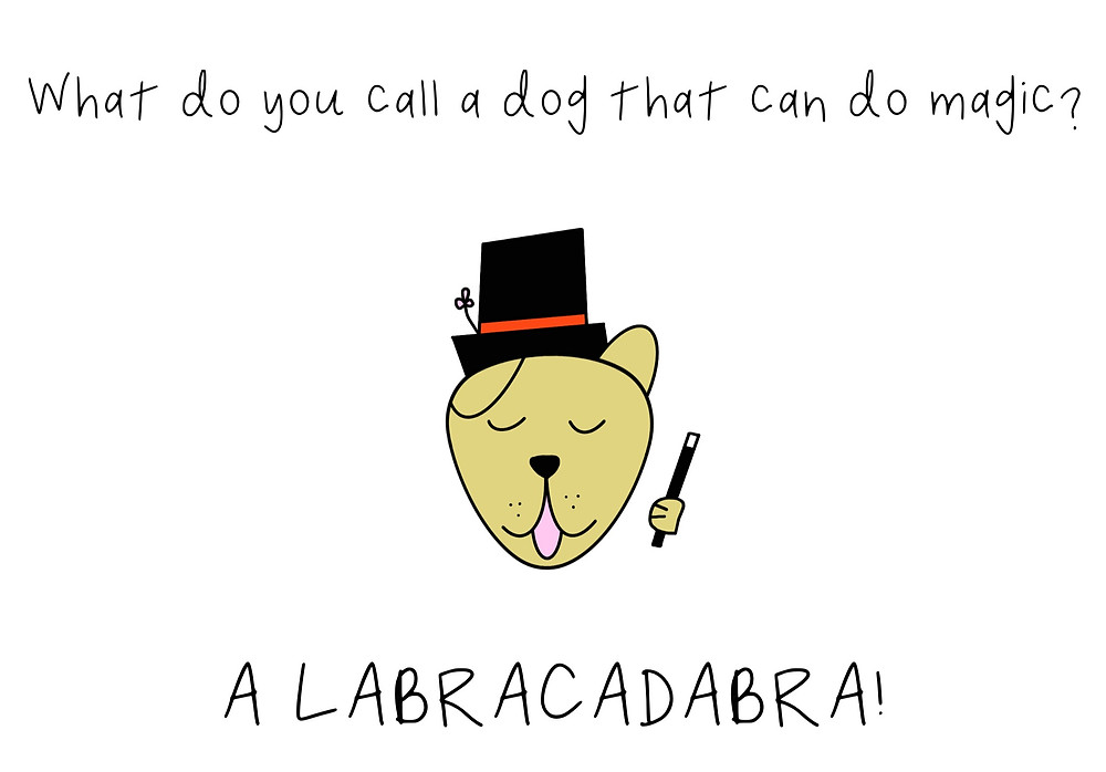 A dog in a magician's hat with a magic wand, with caption: What do you call a dog that can do magic? A Labracadabra!