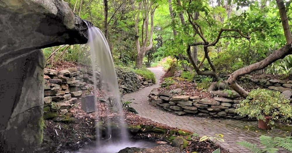 A waterfall and wooded path