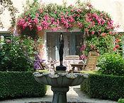 aha Gärten Pflanzen