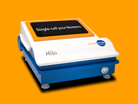 Conheça o Milo: Seu Western de Single-Cell