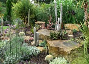 Zen Garden Project