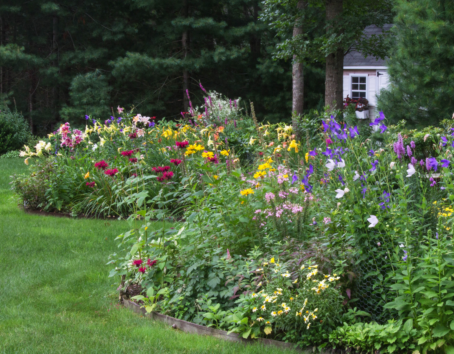 June Blooms Garden Tour