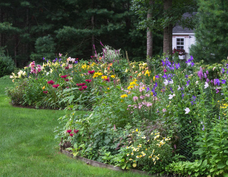 June Blooms Garden Tour